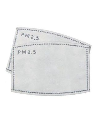 Filters for Reusable Masks -  5 x 2 Packs